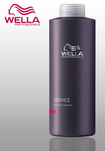 Wella Professional Care Service